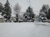 2011年2月12日 雪3