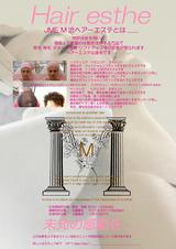 poster-logoMschool-003