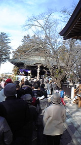 1月1日成田山(野沢)2