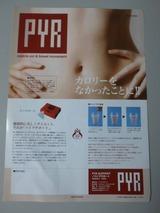 パイラサポートパンフレット02