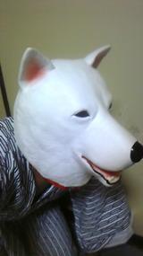 お父さん犬1