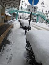 2011年2月12日 雪2